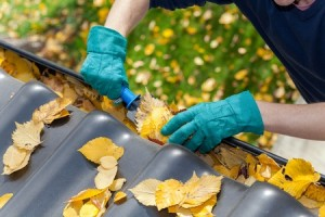 5 Essential Spring Maintenance Items