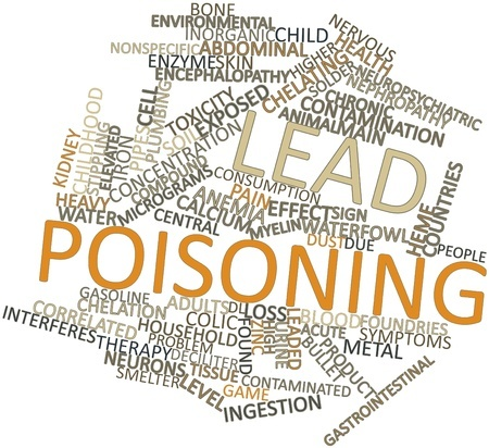 Is your home at risk for lead poisoning first choice for When was lead paint banned